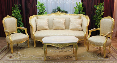 salon canape fauteuil bergere marquise louis XV